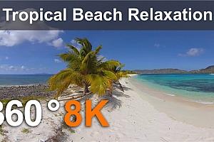 360°VR全景视频:加勒比天堂 热带海滩放松 8K 360VR视频 免费下载(2021)