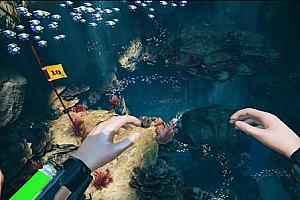 Oculus Quest版《水下求生/潜水者-海平面下降VR》FREEDIVER Triton Down 游戏下载