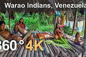 360°全景VR视频:《瓦劳印第安人》委内瑞拉奥里诺科三角洲。4K空中360视频