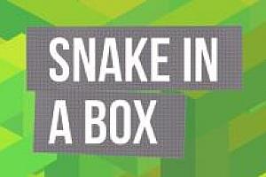 Oculus Quest游戏《VR贪吃蛇》Snake In A Box VR休息益智游戏下载