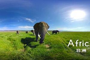 360°全景VR视频:《Africa非洲大陆》非洲大象 VR视频