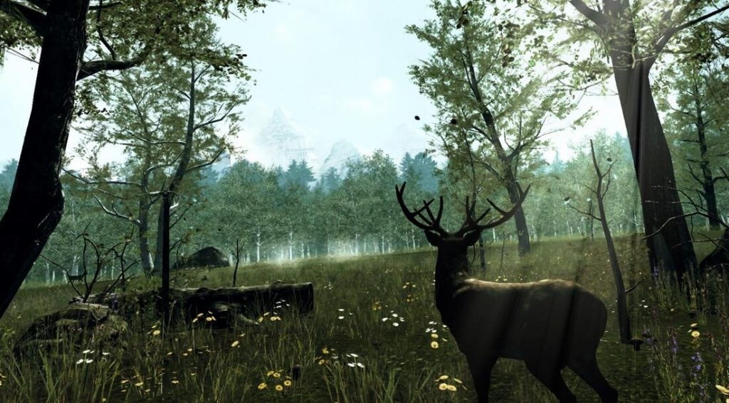 Oculus Quest版《Nature Treks VR》自然之旅VR