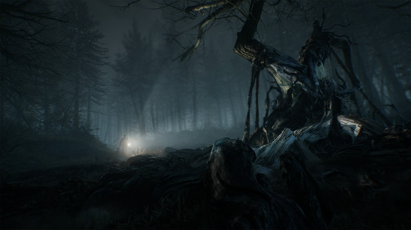 Oculus Quest 游戏《Blair Witch: Oculus Quest Edition》布莱尔女巫插图(1)