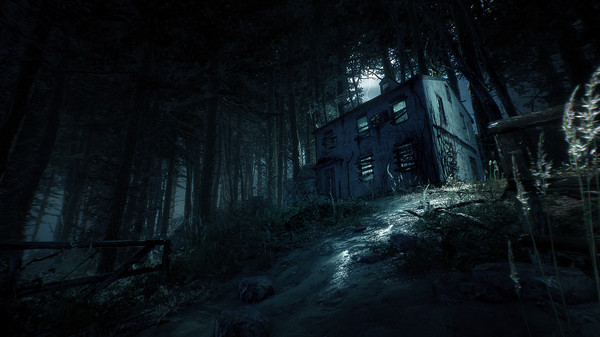 Oculus Quest 游戏《Blair Witch: Oculus Quest Edition》布莱尔女巫插图(2)